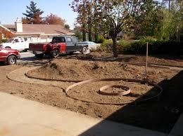 the gardeners anonymous blog drought tolerant garden update