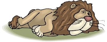 sleeping lion clipart collection