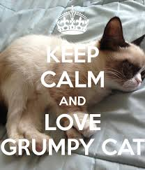 Create A Grumpy Cat Meme - keep calm and love grumpy cat keep calm