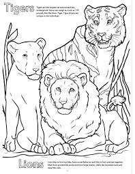 zoo coloring book wallpaper download cucumberpress com