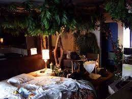 plants inside rooms