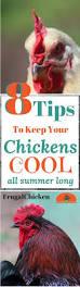 333 best raising backyard chickens images on pinterest chicken