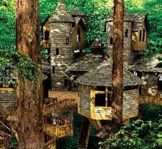 Tree House Home Treehouse Trove U2014 Keeley Kraft