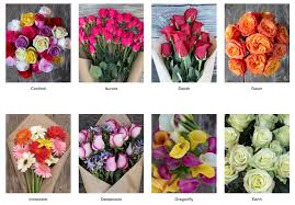 free shipping flowers free flowers from bouqs 40 v day flowers with free shipping and