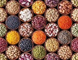 pulses are obtained from the family the homestead gardener