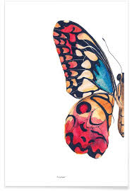 butterfly left as premium poster by mie frey damgaard juniqe