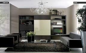 modern contemporary living room ideas modern living room design ideas photos 3807 home and garden