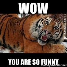 Funny Tiger Memes - tiger memes funny the best tiger of 2018