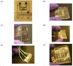 microfluidic devices fabrication for bioelectrokinetic system