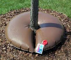 treegator junior pro 15 gallon release watering