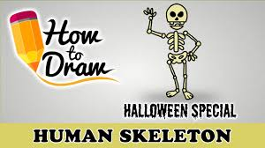 how to draw a human skeleton halloween special easy drawing