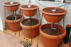 diy mini aquaponics system ornamental set redo