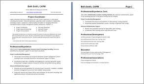 Resume Skills Abilities Examples by Resume Skills Section Example Resume Badak