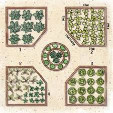 Raised Vegetable Garden Layout Raised Bed Garden Designs And Layouts Many Exles Gardening