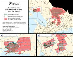 Algonquin Map Ontario Aims To Relieve Pressure On Threatened Algonquin Wolf
