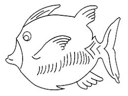 imagenes animales acuaticos para colorear dibujos para colorear de animales del océano marinos acuáticos