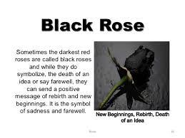 what does a black symbolise hookup website