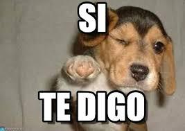 Meme Si - si puppypoint meme on memegen