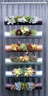 best 25 succulent landscaping ideas on pinterest succulents