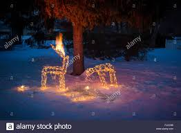 reindeer lawn ornaments on stock photo royalty