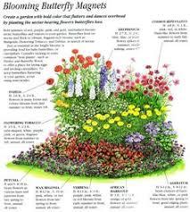 help save the monarchs u2014 ringers landscape services inc