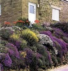 37 best rockery images on pinterest gardening landscaping and