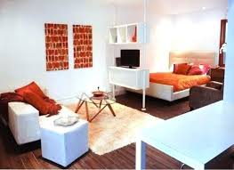 Living Room Apartment Ideas One Bedroom Living Room Ideas 5 Find An Organization System Studio