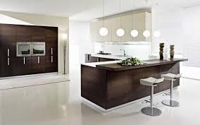 White Kitchen Cabinets Ideas Kitchen New Kitchen Ideas Photos Modular Kitchen Modern Wood