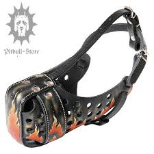 dog muzzle with flame paint for pitbull