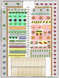 planning a vegetable garden layout and spacing in the backyard