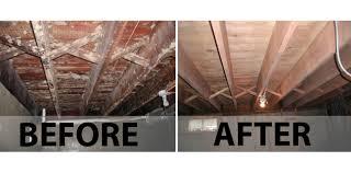 White Mold In Basement Dangerous by Basement Mold Dangers