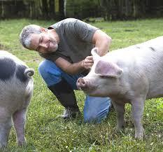 career profile and description pig farmer