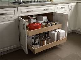 Roll Out Shelves by Hampton Bay Designer Series Designer Kitchen Cabinets Available