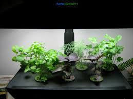 indoor herb garden kit with grow light all the best garden in 2017