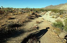 the chaparral will the mojave desert groundwater be sold