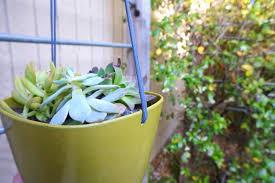 modern hanging planters make your own modern diy hanging planter