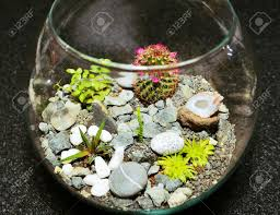 table top indoor decorative miniature garden in clear glass bubble