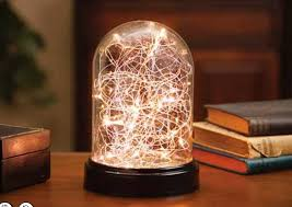 glass cloche battery operated with 20 warm white lights