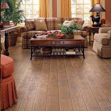 6 pet floor types that might you