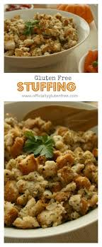 best 25 gluten free ideas on free stuf