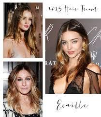 ecaille hair trends for 2015 69 best ecaille techniek images on pinterest hair colors hair
