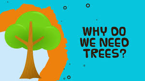 why do we need trees facts about trees for