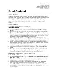 resume michael braga cv sample format resume with technical
