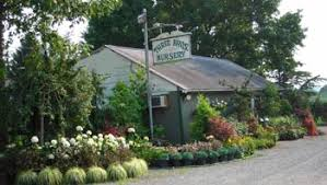 Three Brothers Landscaping by About Us And Business Hours Three Brothers Nursery U0026 Florist