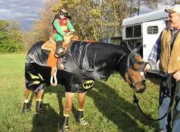 Horse Rider Halloween Costume 89 Horses Images Horse Stuff Horses
