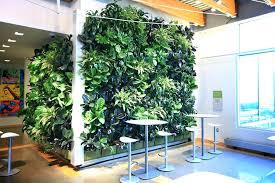 diy outdoor living wall best vertical string garden images on