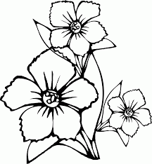 flower picture to color flowers coloring pages color printing