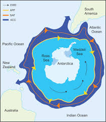 Map Of The World 1 Million Years Ago by Antarctic Notothenioid Fish What Are The Future Consequences Of