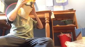 Doge Halloween Costume Unboxing Halloween Costume Doge Mask Unboxing Video 1
