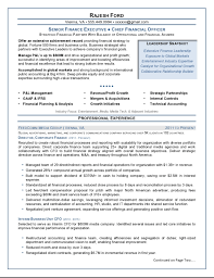 cfo resume exles executive resume sles